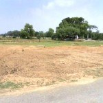 6 Kattha Land For Sale Near Osho Dham, Lumbini