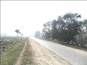 land for sale near maya devi temple
