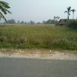 9 Kattha, 12 Dhur Land For Sale Madi kirtanpur, Chitwan