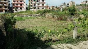 land for sale naya thimi bhaktapur