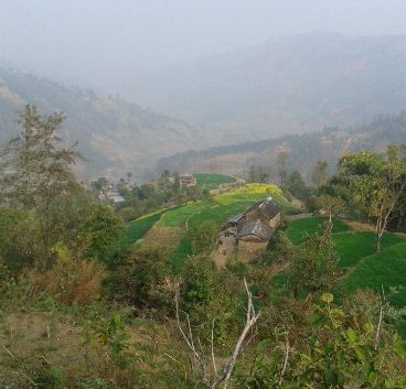 19 Ropani Land For sale in Pakhure, Madanpur, Nuwakot