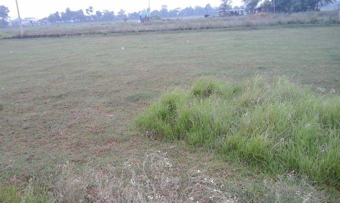 bhalwari-land