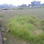 Land on Sale at Lumbini Engineering College, Bhalwari