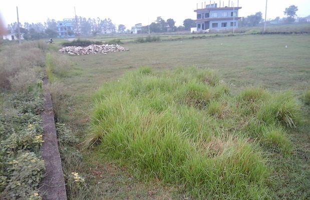 bhalwari-manglapur-land