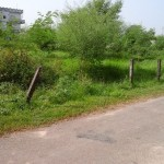30 Dhur Land For Sale Janakinagar, Tilottama
