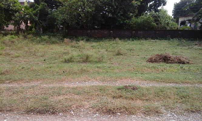 shankar-nagar-land-sale-pic3