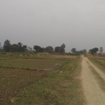 1 Bigha Land for Sale KapilVastu