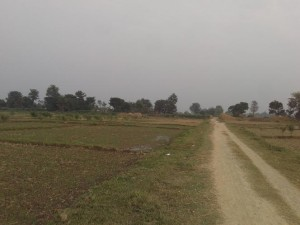kapilvastu land for sale