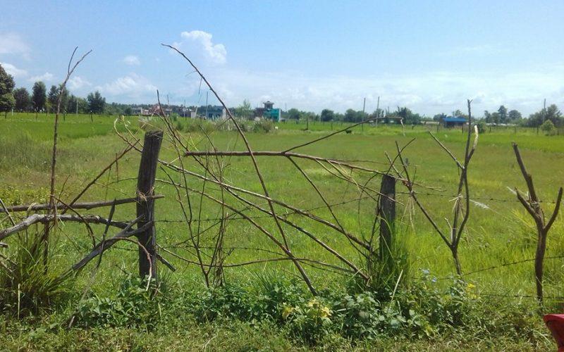 land near banbatika for sale