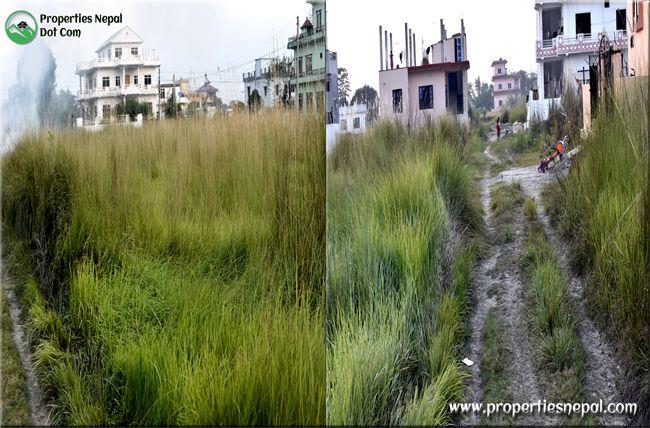 properties nepal property in manigram
