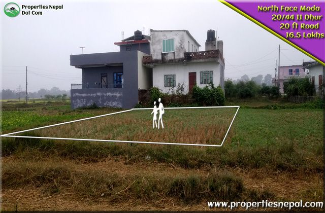 11 Dhur Land For Sale in Ramapur | Sainamaina