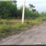 Featured42 Dhur Land For Sale in Semalar, Butwal