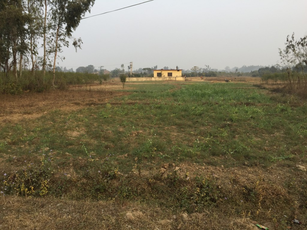 5 Ropani Plot available for sale in Bhimdhunga