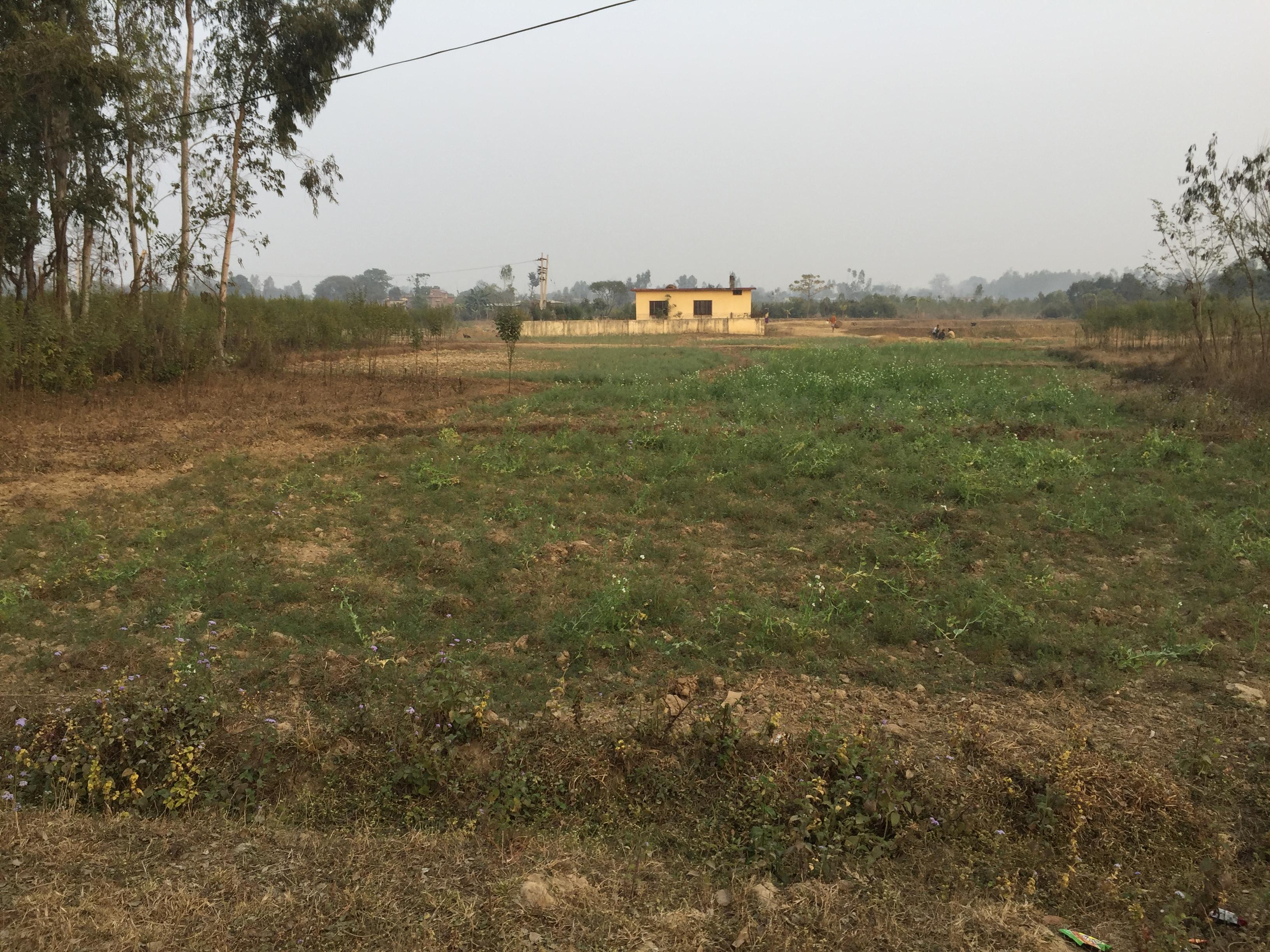 5 Ropani Plot available for sale in Bhimdunga, Kathmandu – IMG_1983
